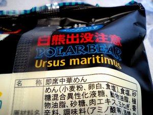 Ursus_2