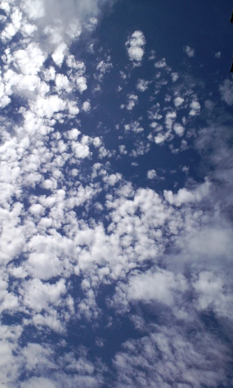 空が青い!