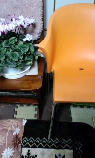 椅子、買って来た